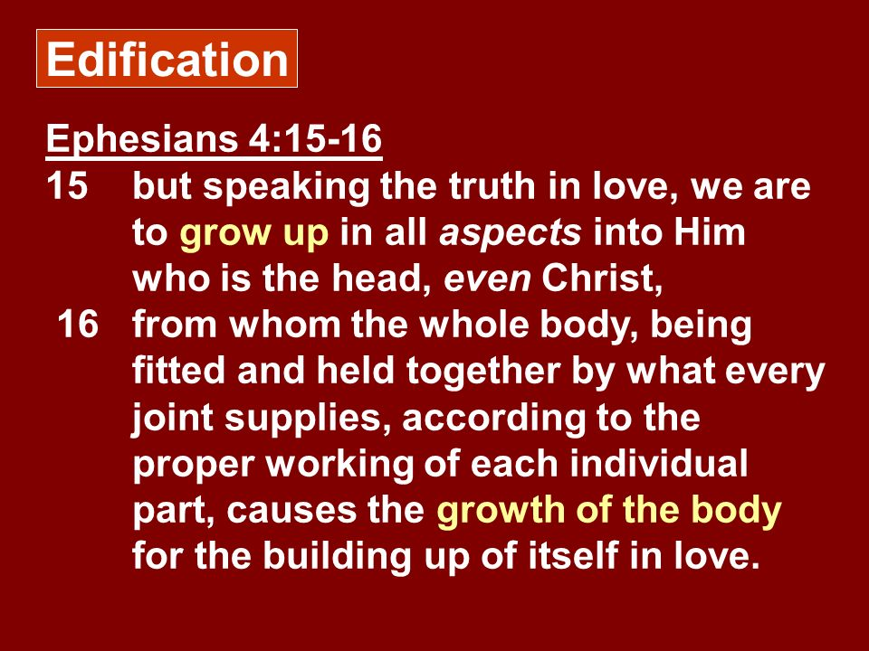 Edification Ephesians 4:15-16 15but speaking the truth in love, we are to grow up in all aspects into Him who is the head, even Christ, 16from whom th