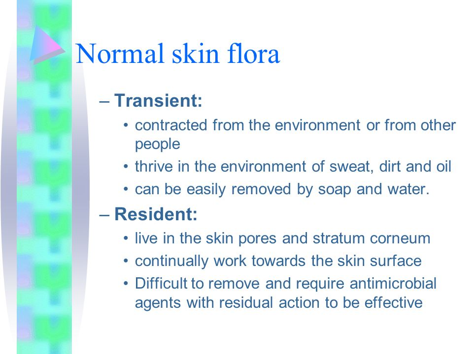 Normal skin flora –Transient: contracted from the environment or from other people thrive in the environment of sweat, dirt and oil can be easily remo