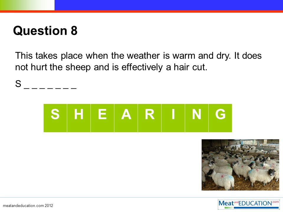 Question 8 This takes place when the weather is warm and dry.