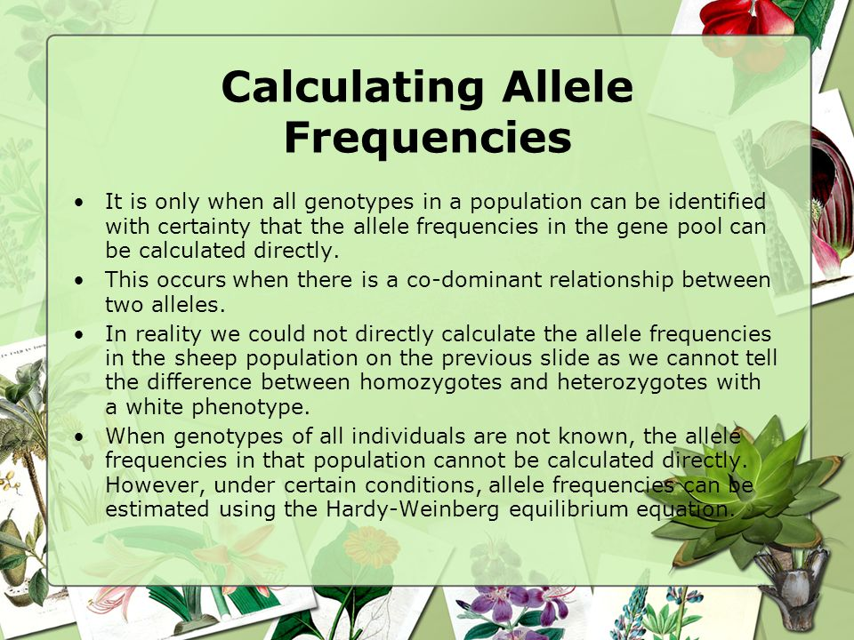 Calculating Allele Frequencies It is only when all genotypes in a population can be identified with certainty that the allele frequencies in the gene