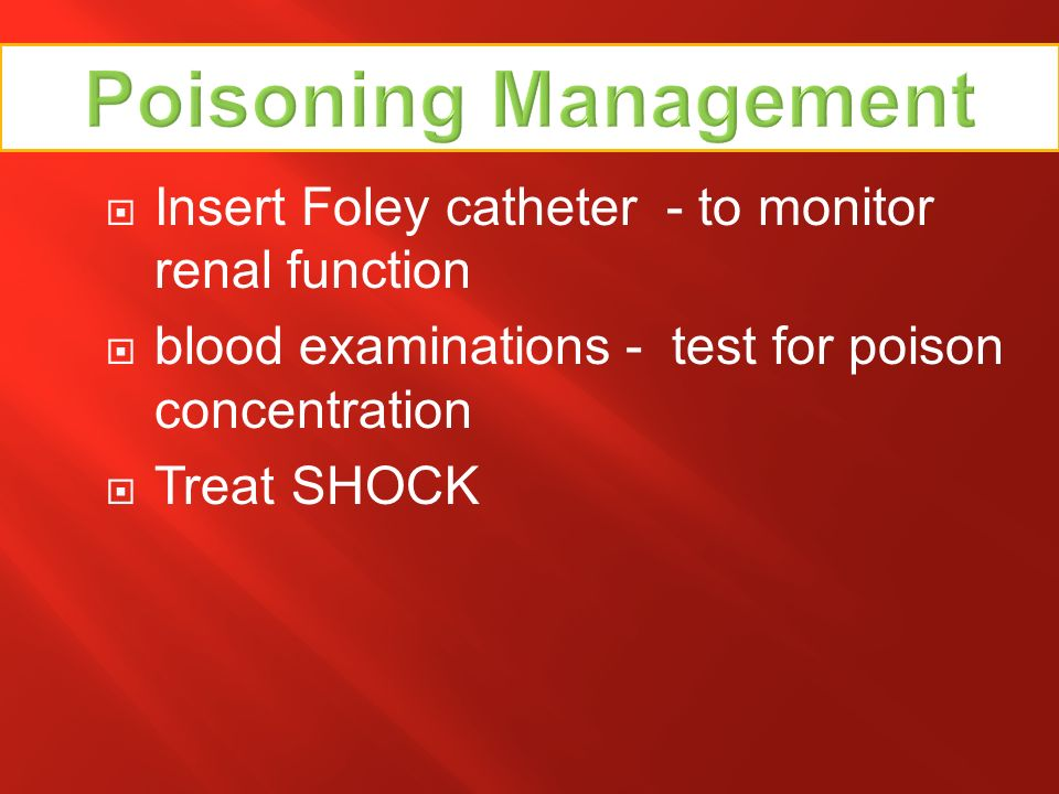 Insert Foley catheter - to monitor renal function blood examinations - test for poison concentration Treat SHOCK