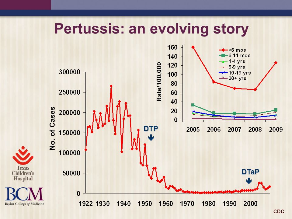 Pertussis: an evolving story DTP DTaP No. of Cases Rate/100,000 CDC