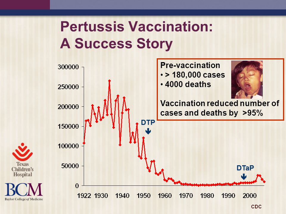 Pertussis Vaccination: A Success Story DTP DTaP Pre-vaccination > 180,000 cases 4000 deaths Vaccination reduced number of cases and deaths by >95% CDC