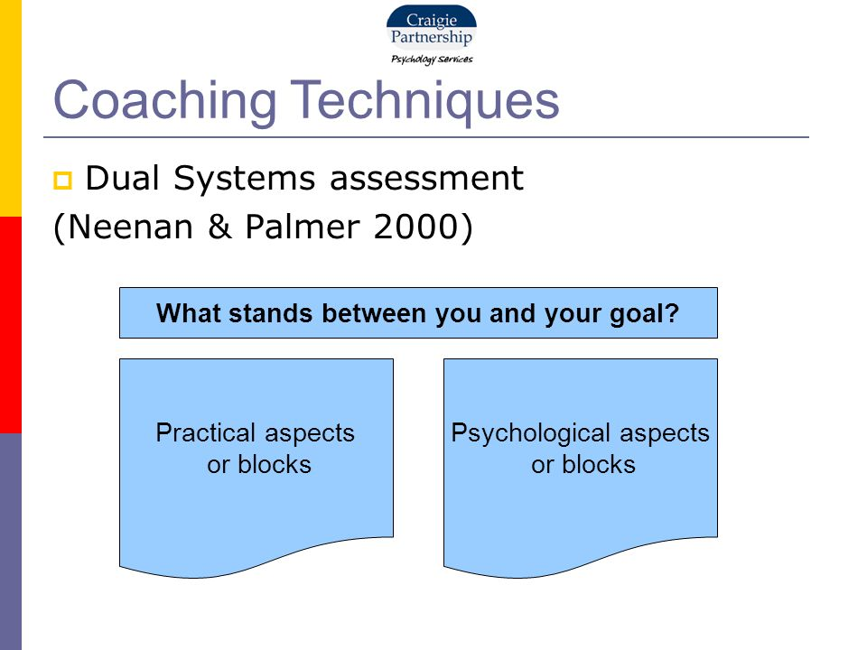 Dual Systems assessment (Neenan & Palmer 2000) Coaching Techniques Practical aspects or blocks Psychological aspects or blocks What stands between you and your goal
