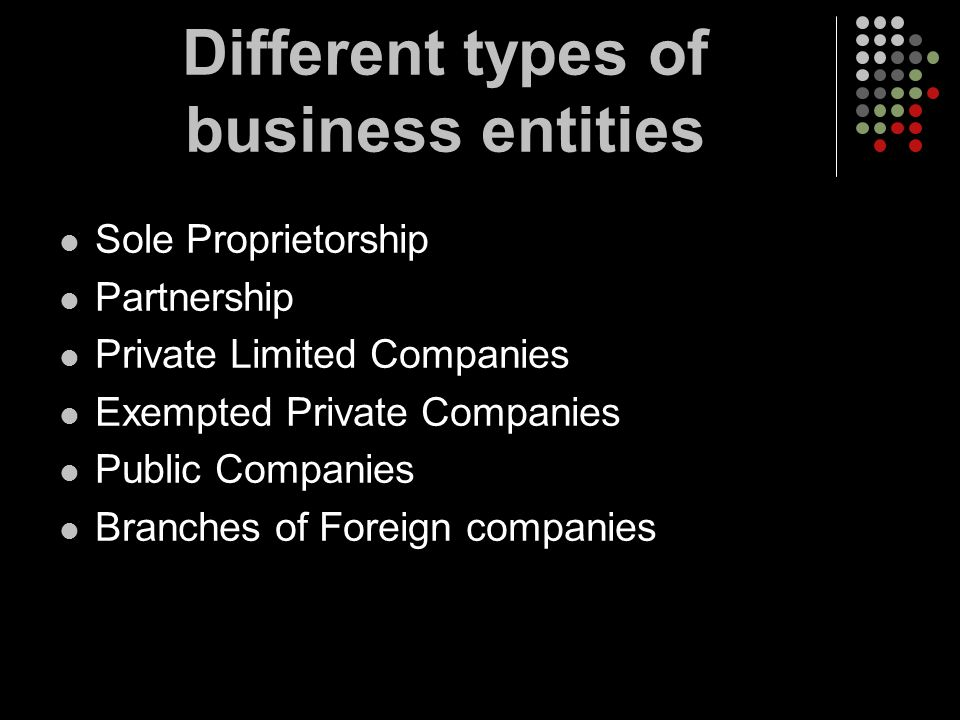 Different types of business entities Sole Proprietorship Partnership Private Limited Companies Exempted Private Companies Public Companies Branches of