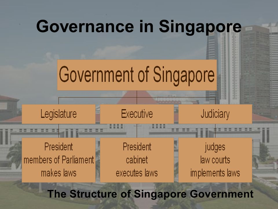 Governance in Singapore The Structure of Singapore Government