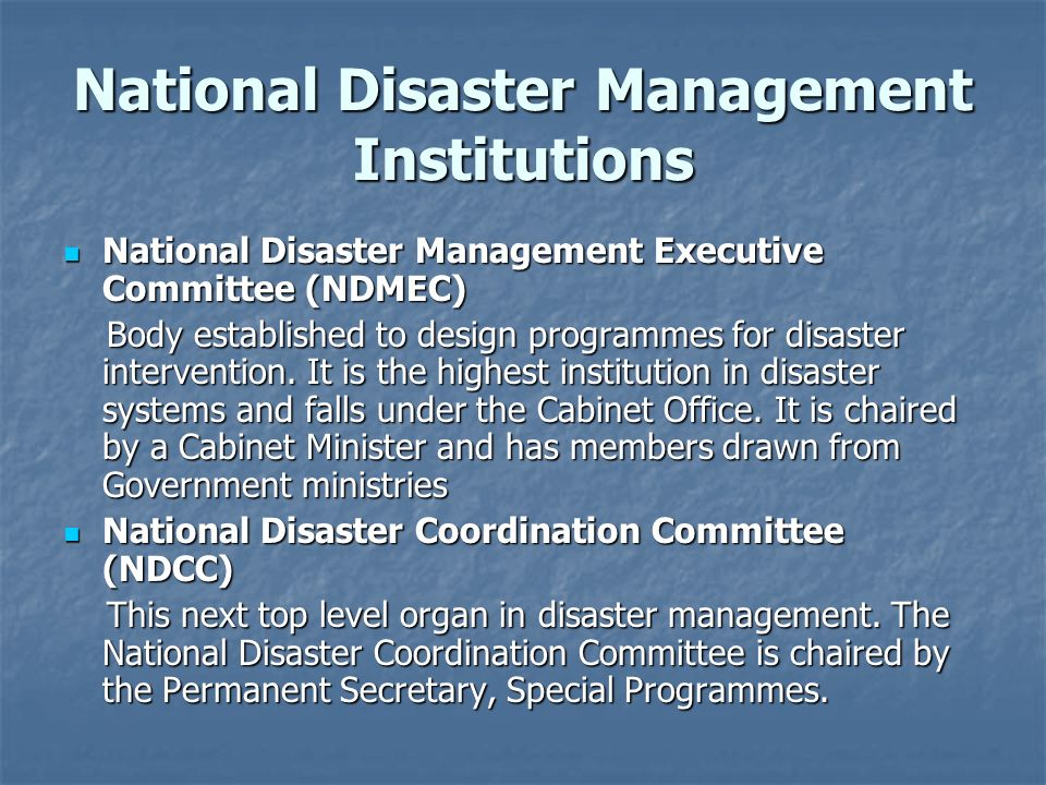 National Disaster Management Institutions National Disaster Management Executive Committee (NDMEC) National Disaster Management Executive Committee (N