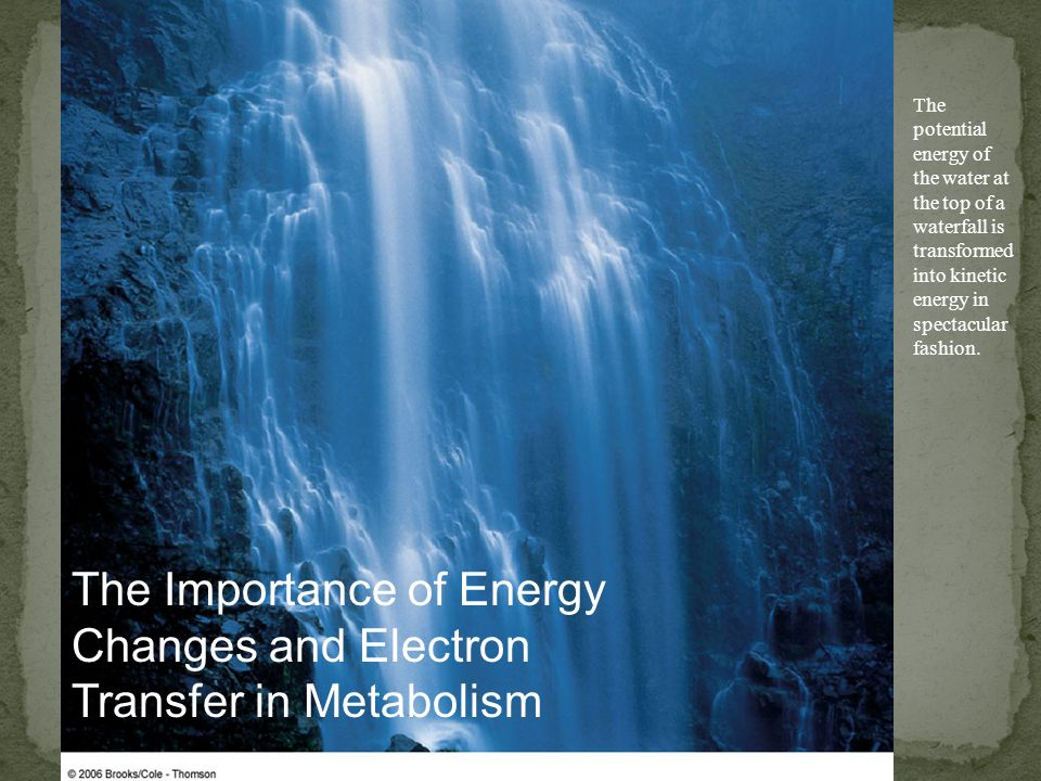 The Importance of Energy Changes and Electron Transfer in Metabolism The potential energy of the water at the top of a waterfall is transformed into k