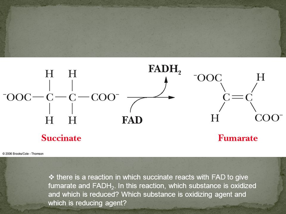 there is a reaction in which succinate reacts with FAD to give fumarate and FADH 2. In this reaction, which substance is oxidized and which is reduced