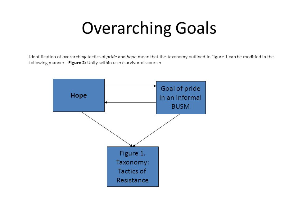 Overarching Goals Identification of overarching tactics of pride and hope mean that the taxonomy outlined in Figure 1 can be modified in the following manner - Figure 2: Unity within user/survivor discourse: Hope Goal of pride In an informal BUSM Figure 1.
