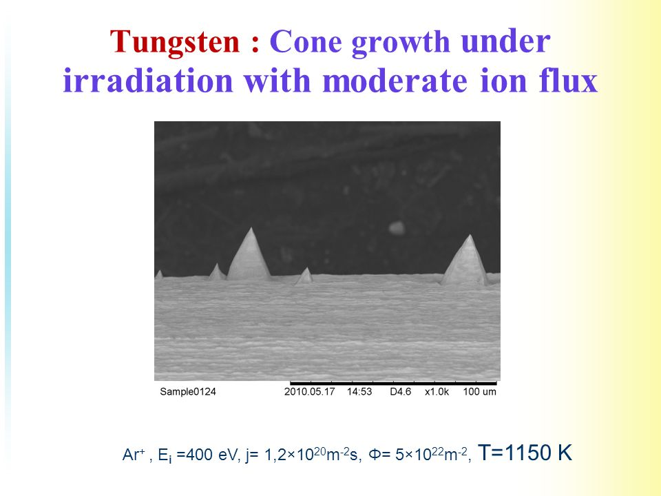 Tungsten : Cone growth under irradiation with moderate ion flux Ar +, E i =400 eV, j= 1,2×10 20 m -2 s, Φ= 5×10 22 m -2, T=1150 K