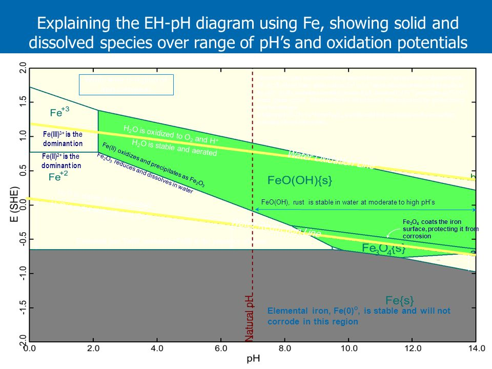 Explaining the EH-pH diagram using Fe, showing solid and dissolved species over range of pHs and oxidation potentials H 2 O is oxidized to O 2 and H +