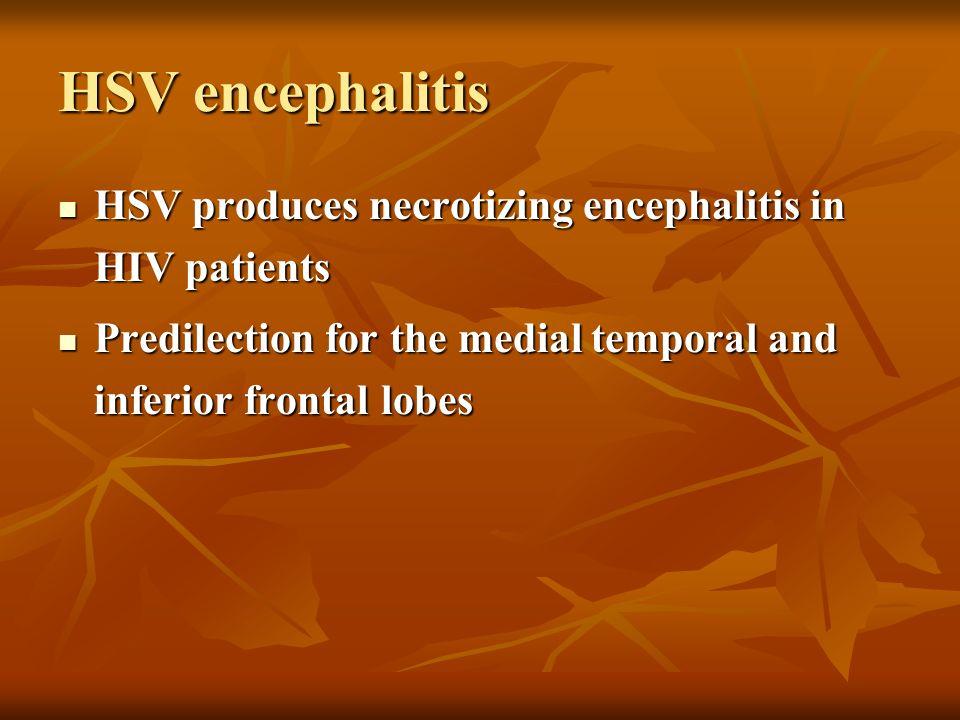 HSV encephalitis HSV produces necrotizing encephalitis in HIV patients HSV produces necrotizing encephalitis in HIV patients Predilection for the medi