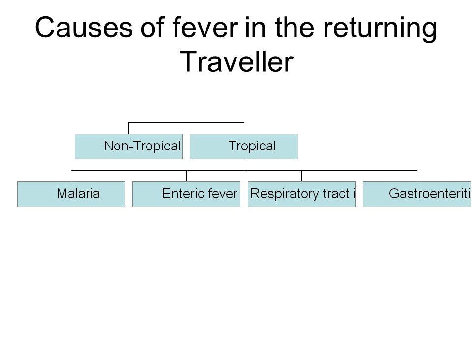 Causes of fever in the returning Traveller