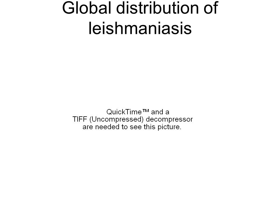 Global distribution of leishmaniasis