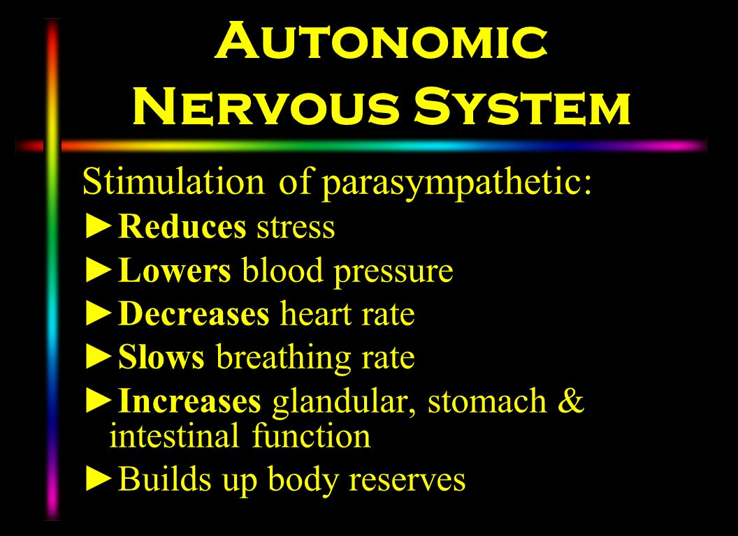 Autonomic Nervous System Stimulation of parasympathetic: Reduces stress Lowers blood pressure Decreases heart rate Slows breathing rate Increases glan