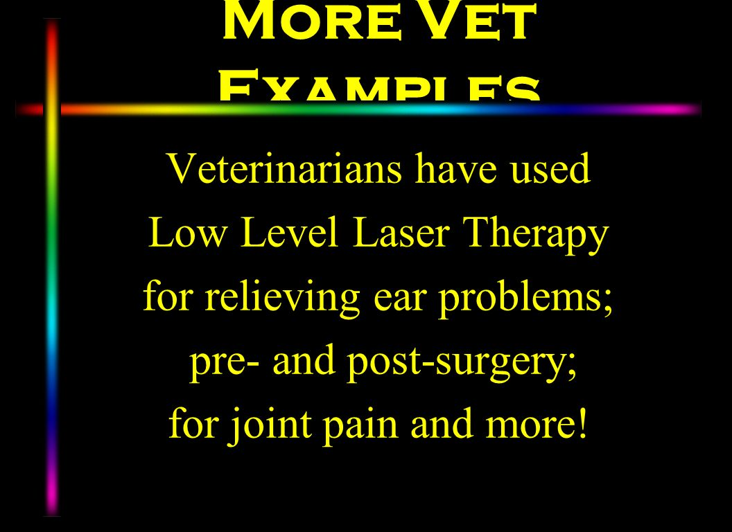 More Vet Examples Veterinarians have used Low Level Laser Therapy for relieving ear problems; pre- and post-surgery; for joint pain and more!