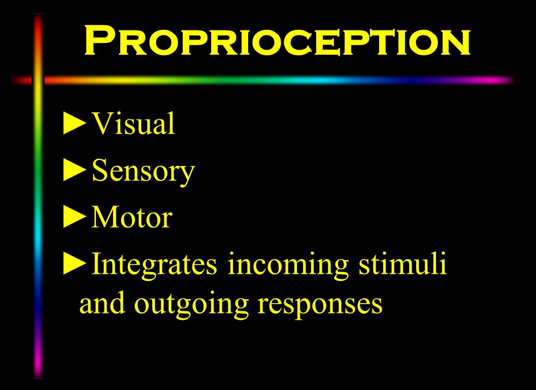Proprioception Visual Sensory Motor Integrates incoming stimuli and outgoing responses