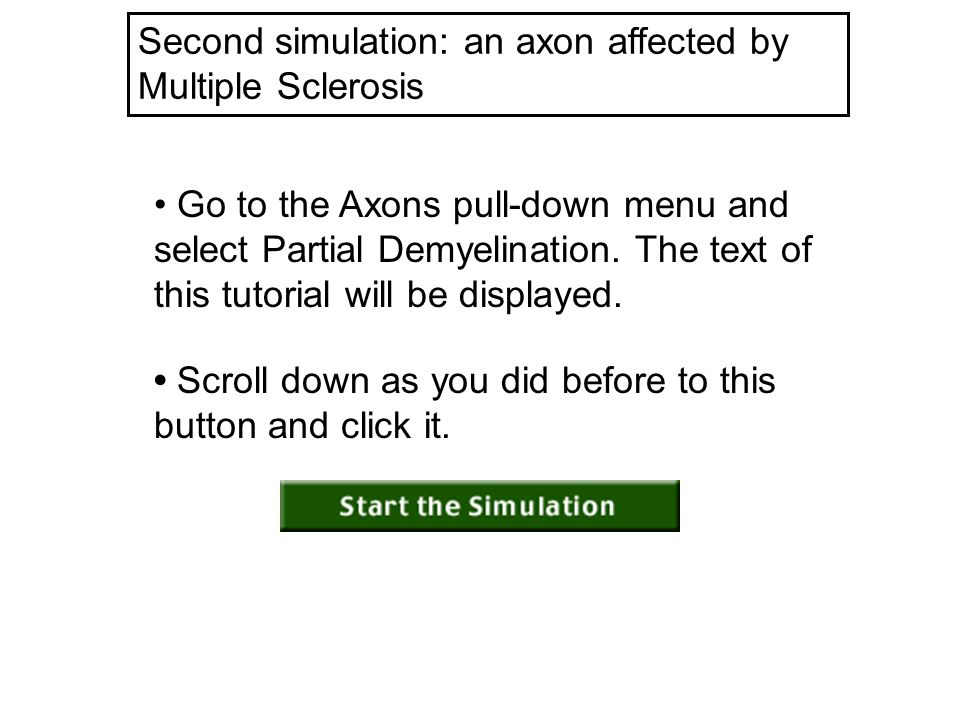 Scroll down as you did before to this button and click it. Second simulation: an axon affected by Multiple Sclerosis Go to the Axons pull-down menu an