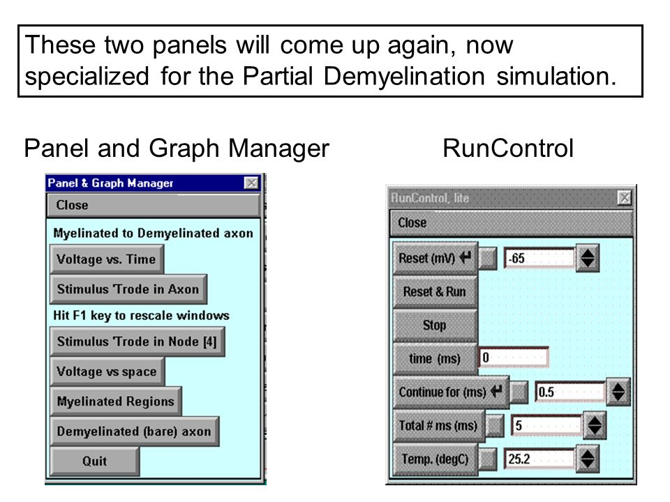These two panels will come up again, now specialized for the Partial Demyelination simulation. Panel and Graph ManagerRunControl