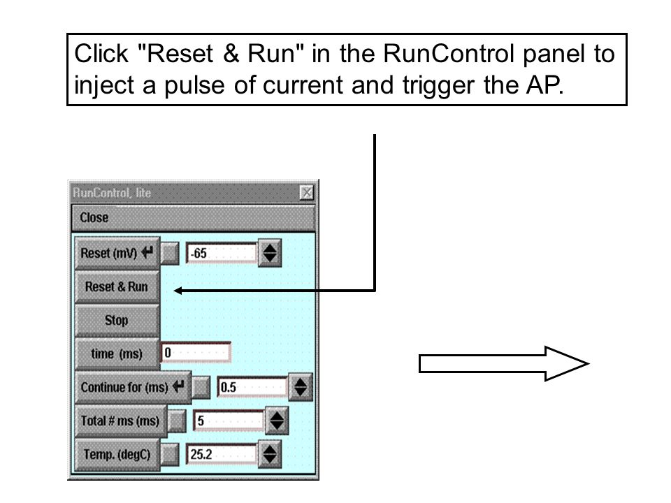 Click Reset & Run in the RunControl panel to inject a pulse of current and trigger the AP.