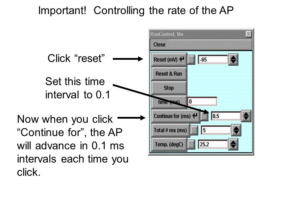 Important! Controlling the rate of the AP Click reset Set this time interval to 0.1 Now when you click Continue for, the AP will advance in 0.1 ms int