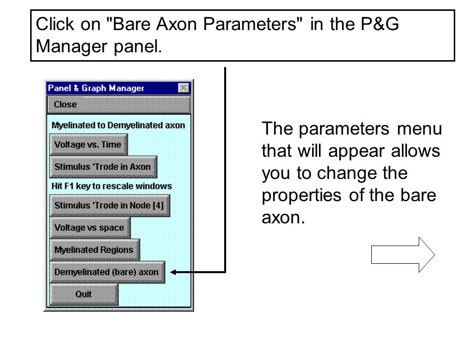 Click on Bare Axon Parameters in the P&G Manager panel.