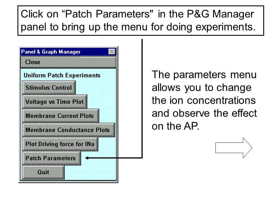 Click on Patch Parameters