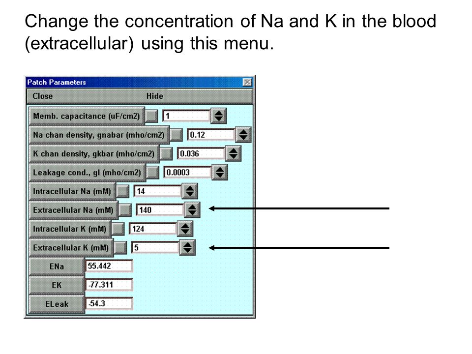 Change the concentration of Na and K in the blood (extracellular) using this menu.