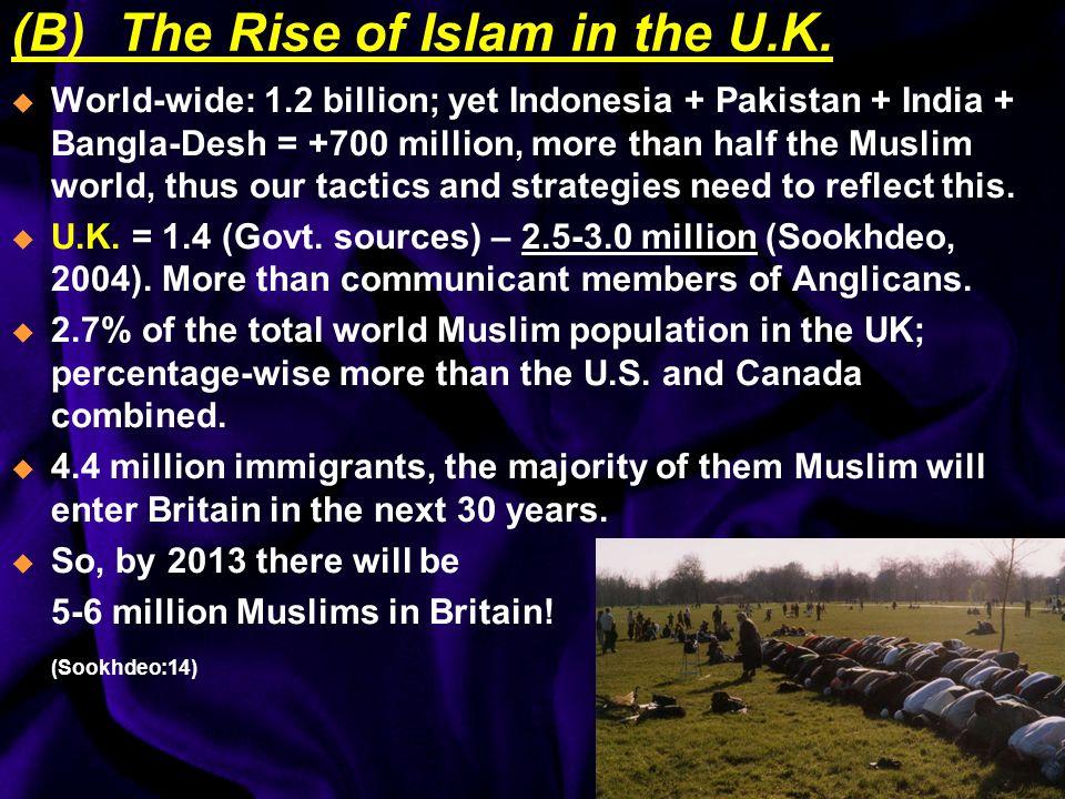 Ethnic Breakdown: 70% from the Indian sub-continent: -Pakistan (Mirpur, Kashmir) = 46% -Bangla Desh (Sylhet) = 16%, -Indians (Gujarat) = 8% -Arab = 11% -Rest from M.East & Africa (Rahman, Motiur, British Muslims envisage Islamic Britain, The Muslim Weekly, 26 November – 2 December 2004)