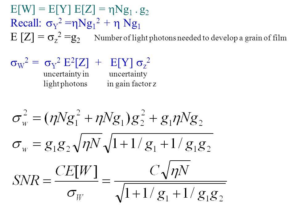 E[W] = E[Y] E[Z] = Ng 1.