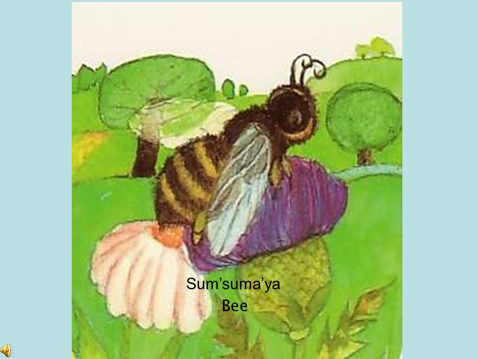Grasshopper Sahwulshun