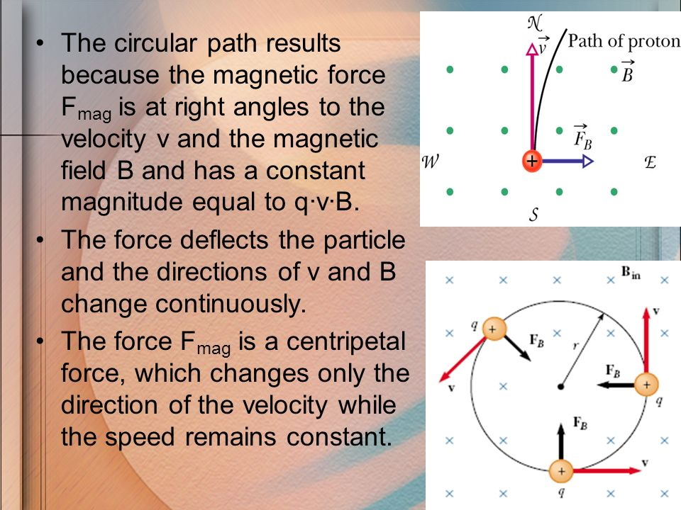 The circular path results because the magnetic force F mag is at right angles to the velocity v and the magnetic field B and has a constant magnitude
