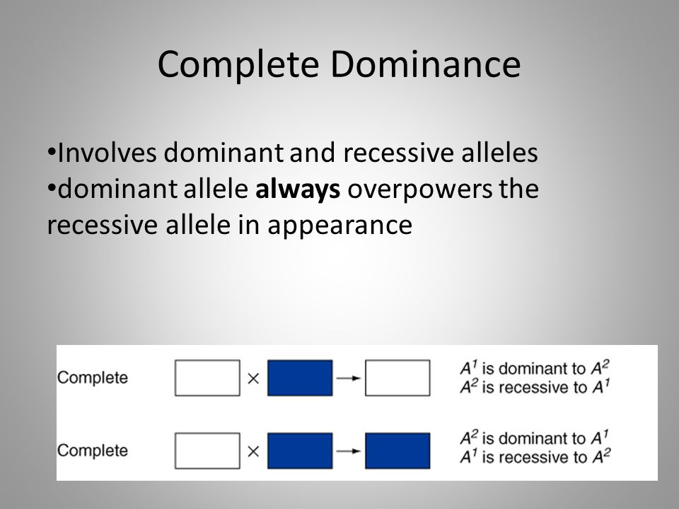 Complete Dominance Involves dominant and recessive alleles dominant allele always overpowers the recessive allele in appearance