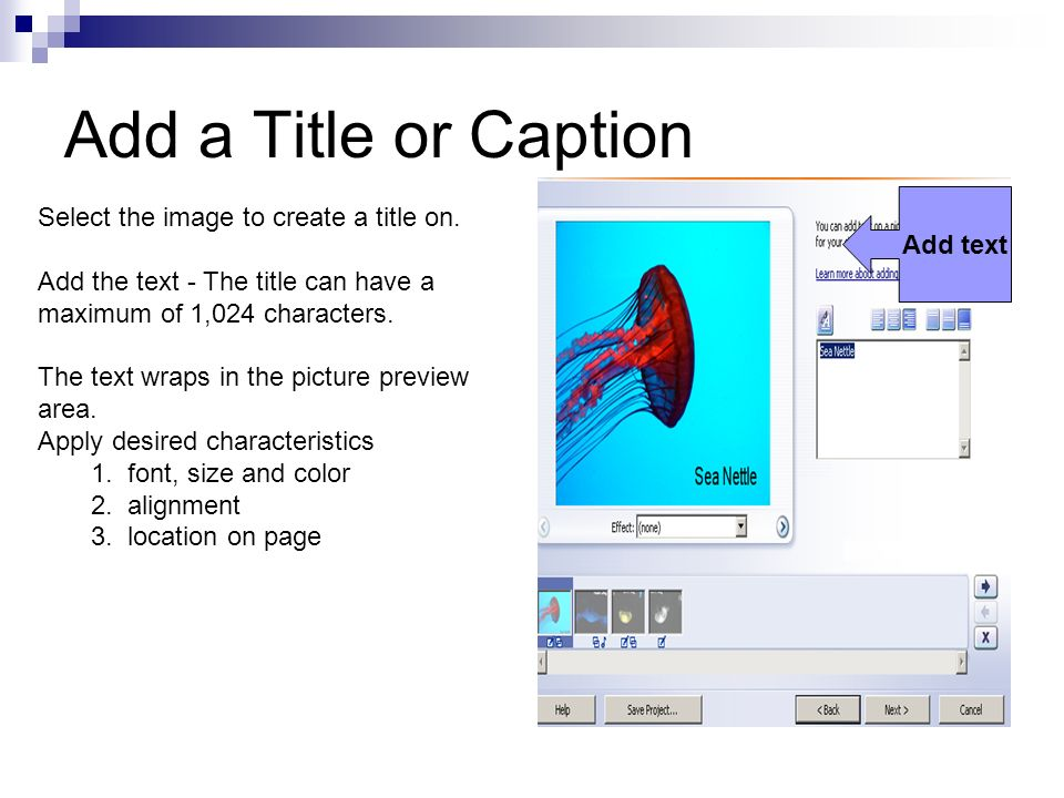 Add a Title or Caption Add text Select the image to create a title on. Add the text - The title can have a maximum of 1,024 characters. The text wraps