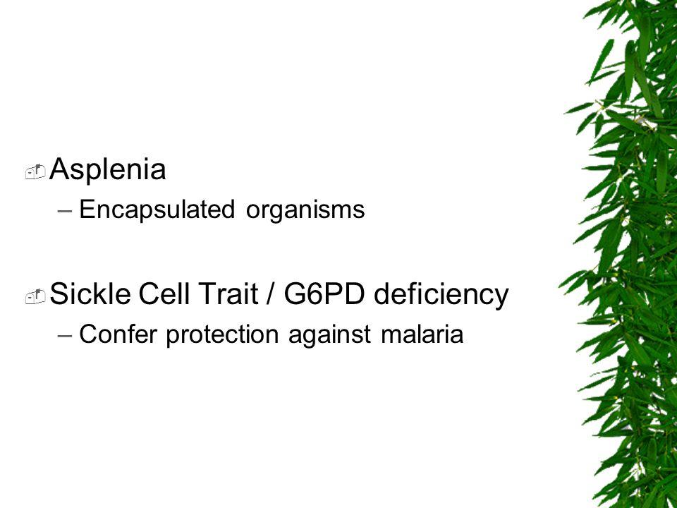 Asplenia –Encapsulated organisms Sickle Cell Trait / G6PD deficiency –Confer protection against malaria
