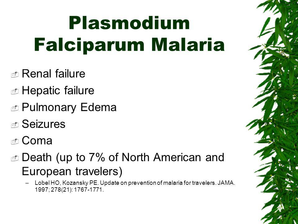 Plasmodium Falciparum Malaria Renal failure Hepatic failure Pulmonary Edema Seizures Coma Death (up to 7% of North American and European travelers) –L