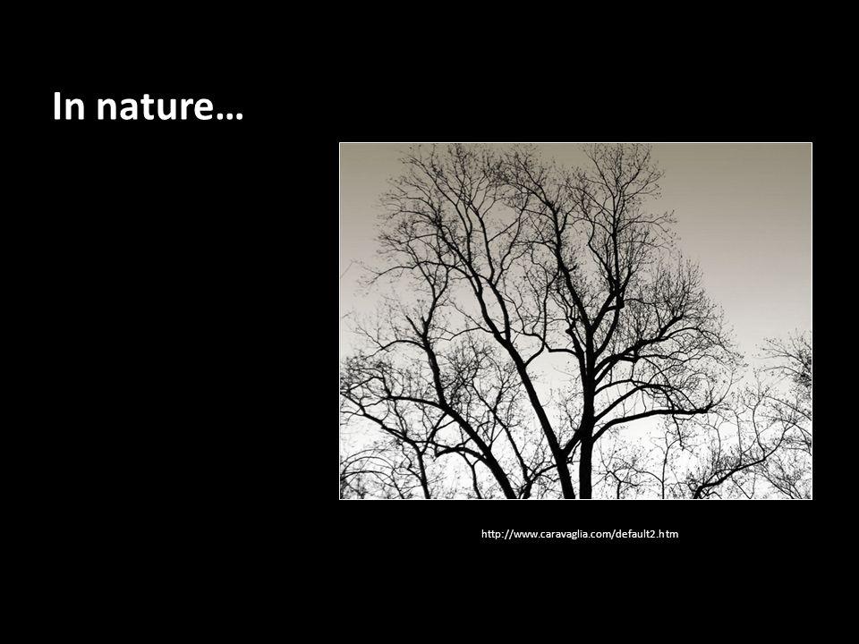 In nature… http://www.caravaglia.com/default2.htm