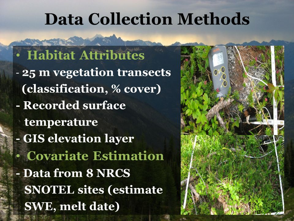 Data Collection Methods Habitat Attributes - 25 m vegetation transects (classification, % cover) - Recorded surface temperature - GIS elevation layer Covariate Estimation - Data from 8 NRCS SNOTEL sites (estimate SWE, melt date)