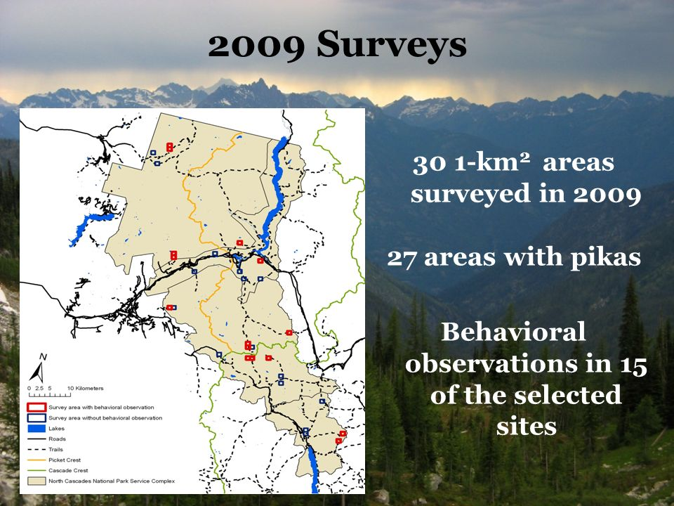 2009 Surveys 30 1-km 2 areas surveyed in areas with pikas Behavioral observations in 15 of the selected sites