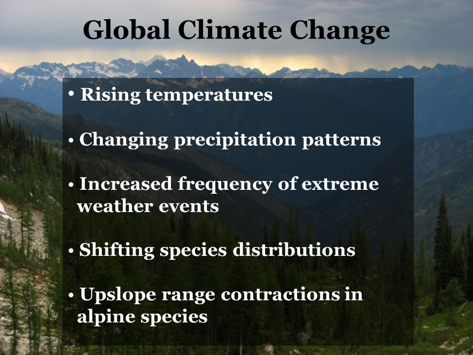 Rising temperatures Changing precipitation patterns Increased frequency of extreme weather events Shifting species distributions Upslope range contractions in alpine species Global Climate Change
