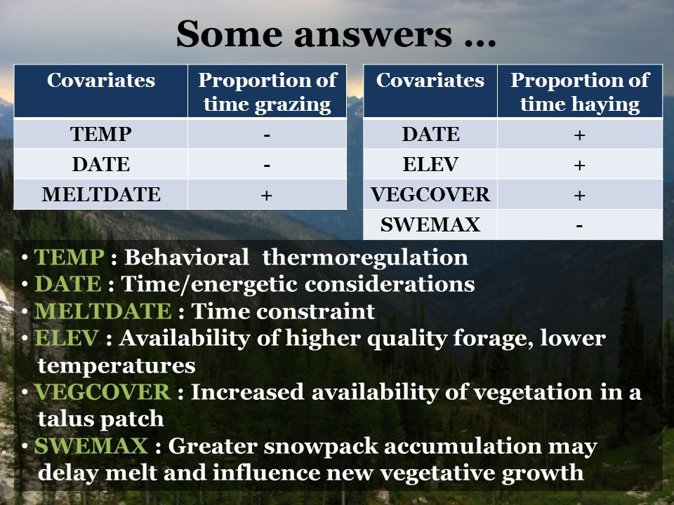 Some answers … CovariatesProportion of time grazing TEMP- DATE- MELTDATE+ CovariatesProportion of time haying DATE+ ELEV+ VEGCOVER+ SWEMAX- TEMP : Behavioral thermoregulation DATE : Time/energetic considerations MELTDATE : Time constraint ELEV : Availability of higher quality forage, lower temperatures VEGCOVER : Increased availability of vegetation in a talus patch SWEMAX : Greater snowpack accumulation may delay melt and influence new vegetative growth