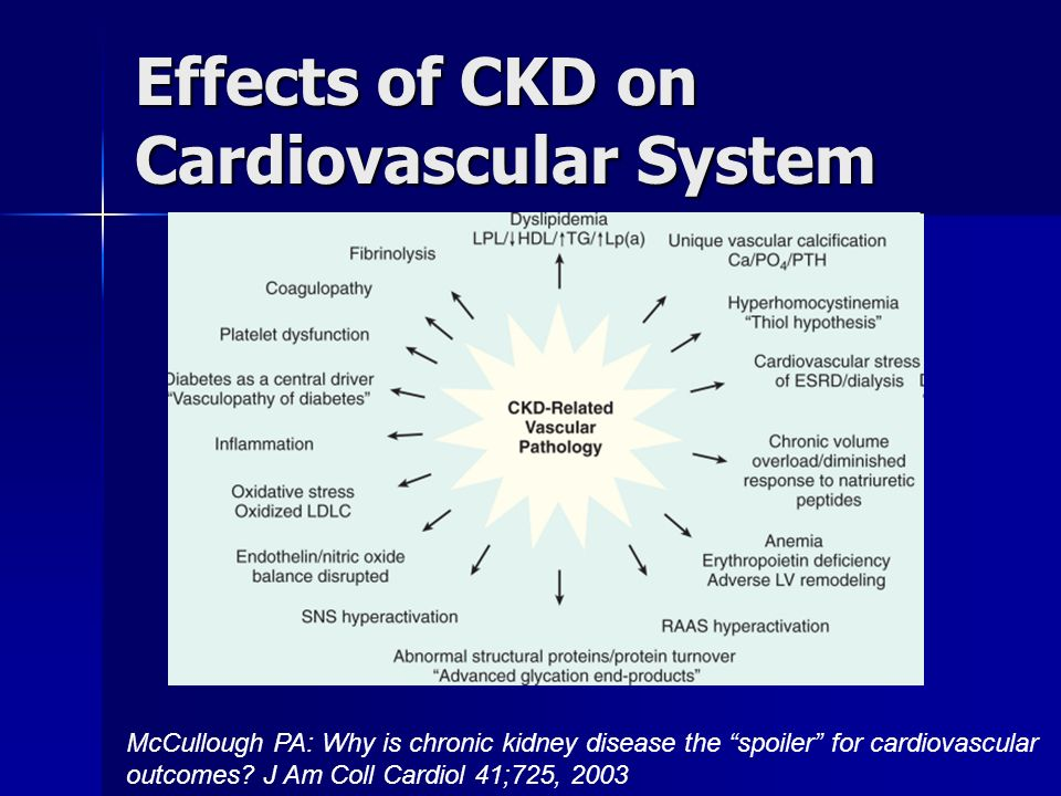 Effects of CKD on Cardiovascular System McCullough PA: Why is chronic kidney disease the spoiler for cardiovascular outcomes.