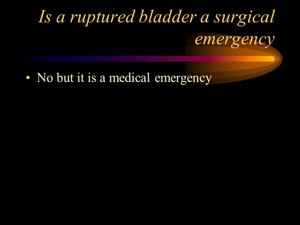 Is a ruptured bladder a surgical emergency No but it is a medical emergency
