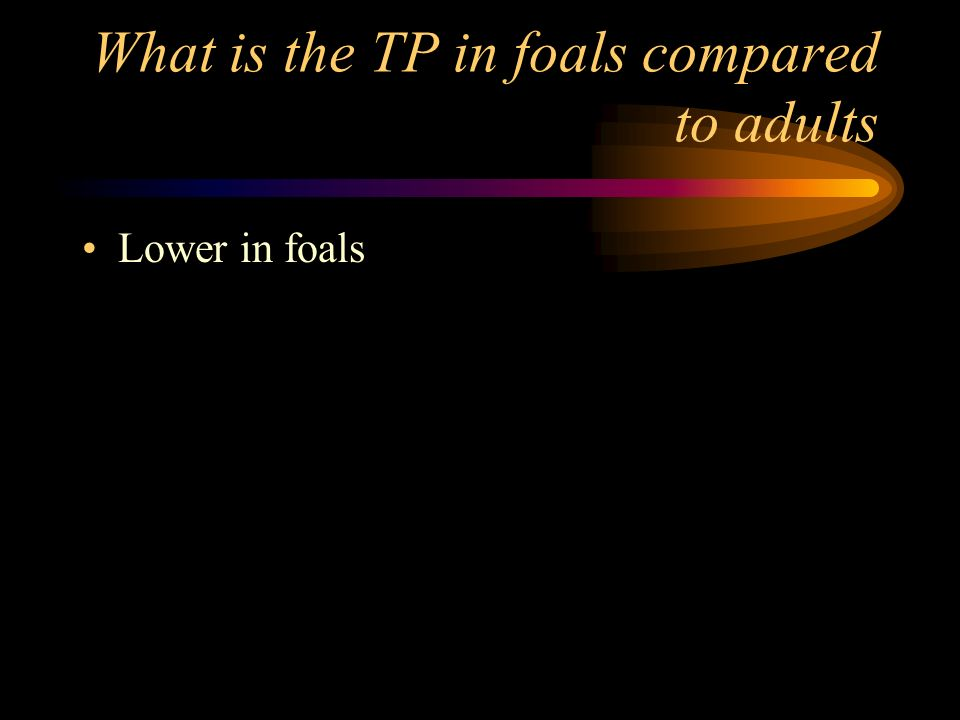 What is the TP in foals compared to adults Lower in foals