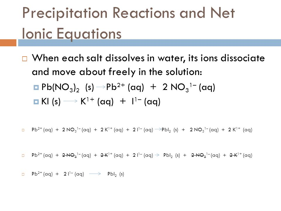 Precipitation Reactions and Net Ionic Equations When each salt dissolves in water, its ions dissociate and move about freely in the solution: Pb(NO 3