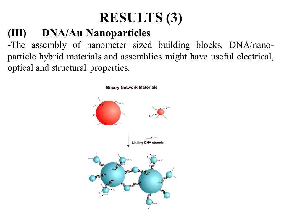 RESULTS (3) (III) DNA/Au Nanoparticles -The assembly of nanometer sized building blocks, DNA/nano- particle hybrid materials and assemblies might have