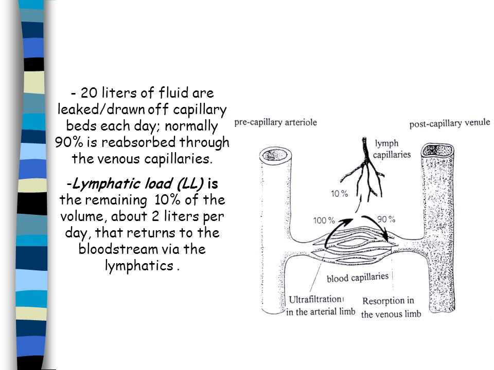 - 20 liters of fluid are leaked/drawn off capillary beds each day; normally 90% is reabsorbed through the venous capillaries. -Lymphatic load (LL) is
