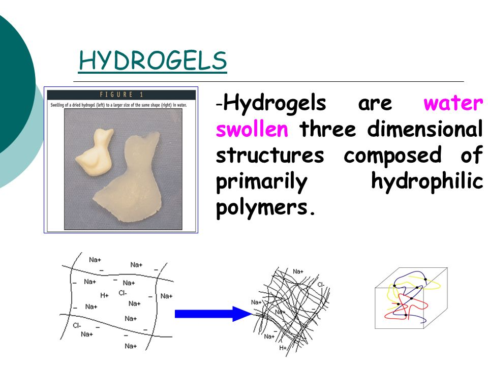 HYDROGELS – Hydrogels are water swollen three dimensional structures composed of primarily hydrophilic polymers.