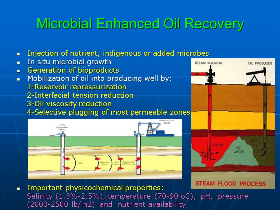 Microbial Enhanced Oil Recovery Injection of nutrient, indigenous or added microbes Injection of nutrient, indigenous or added microbes In situ microb